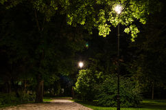 City park at night Stock Photography