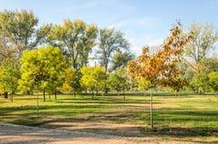 City Park. Novi Sad in autumn colors Stock Photos