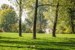 City Park. Novi Sad in autumn colors Royalty Free Stock Photography