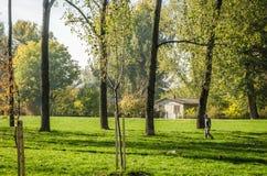City Park. Novi Sad in autumn colors Royalty Free Stock Images