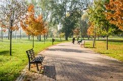 City Park. Novi Sad in autumn colors Stock Photography