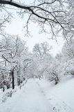 City park path covered by heavy snow Royalty Free Stock Photo