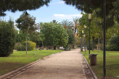 In the city park pathway. Park at the town with trees and palms on the way Stock Image