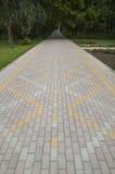 City park pavement Royalty Free Stock Photo