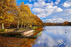 City Park Peterhof. Golden Autumn. Royalty Free Stock Photography