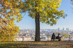 City Park, silence and solitude, trees, sunshine, yellow foliage in Prague in autumn Stock Photography