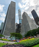 City Park and Skyscrapers on Fifth Avenue Royalty Free Stock Images