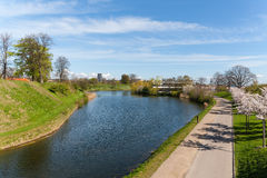 City park in the spring Royalty Free Stock Image