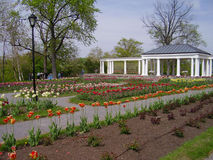 City park in Springtime. Urban park in Buffalo, New York Stock Images