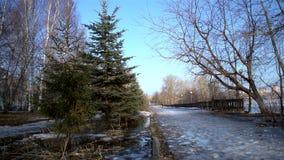 The city park, thaws snow stock video