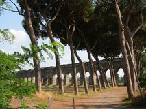 Roman city park with an dry earth path of mediterannean pins with behind an antique aqueduc. Rome Italy royalty free stock photography