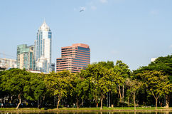 City park under blue sky with Downtown Royalty Free Stock Photography