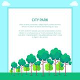 City Park with Trees of Different Shapes and Sizes. City park vector illustration of neatly planted trees colored with vivid shades of green on background with Stock Image