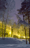 City park on a winter evening Royalty Free Stock Photo