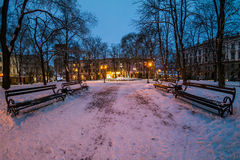 City park in winter at night Royalty Free Stock Images