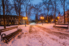 City park in winter at night Royalty Free Stock Photo
