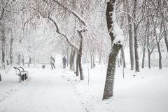 City park in winter. Walkway and benches covered with snow. Town recreation area after snowfall. Winter weather forecast. Heavy. Snowstorm and blizzard stock photography