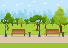 City Park wooden bench, lawn and trees, trash can. Walkway and Street light. Town and city park landscape nature. Vector stock illustration