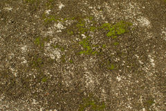 City Pavement Texture Royalty Free Stock Image