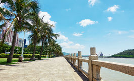City street sidewalk view. Urban city street sidewalk view and  scenery. Stone road at seaside with balustrade and coconut tree Stock Image
