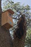 City of Rocks Birdhouse Royalty Free Stock Photo