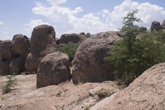 City of Rocks State park, Grant county New Mexico. Royalty Free Stock Image