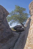 City of Rocks State park Stock Photo