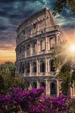 City of Rome in evening Stock Photos
