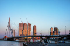 City of Rotterdam Downtown at Sunset Royalty Free Stock Photography
