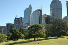 City Scape. Skyline view of Sydney Highrises facing the famous Royal Botanical Gardens Royalty Free Stock Image