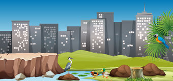 City scene with birds in the park. Illustration Stock Images