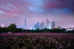 City scene in violet dust, Shenzhen, China