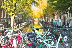 City scenic from Amsterdam in Netherlands in autumn. City scenic from Amsterdam in the Netherlands in autumn Stock Image