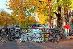 City scenic from Amsterdam Netherlands in autumn. City scenic from Amsterdam in the Netherlands in autumn Royalty Free Stock Images