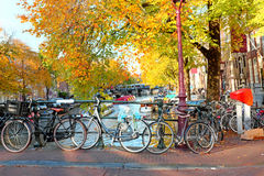 City scenic from Amsterdam in Netherlands in autumn Stock Image