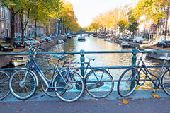 City scenic from Amsterdam Netherlands in autumn. City scenic from Amsterdam in the Netherlands in autumn Royalty Free Stock Photos