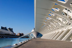 City of Sciences in Valencia, Spain Royalty Free Stock Photo