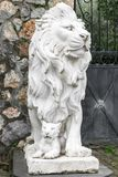City sculpture of a lion and a lion cub at the entrance. Local landmark. Front view stock photo