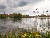 City See angeschmiegt im Park Lizenzfreie Stockbilder