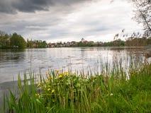 City See angeschmiegt im Park Stockbild