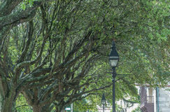 City sidewalks Royalty Free Stock Image