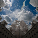 City Sky. High Resolution 3D Illustration City Sky with clouds and bird in flight Royalty Free Stock Images