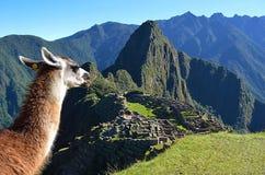 City in the Sky. Machu Picchu, Peru Stock Photo