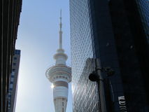 The city sky tower with other buildings Stock Images