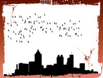 City skyline. With flock of birds on grunge frame Royalty Free Stock Image