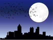 City skyline under moon. City line under moon light with flock of birds Stock Image