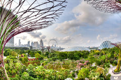 City Skyline View From Gardens by the Bay Royalty Free Stock Images