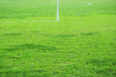 City stadium with green grass and white markings for playing football. City stadium with green grass and white markings for playing football Royalty Free Stock Photos