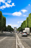City street. Traffic on an urban cobbled road edged with green trees Stock Photography