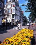 City Street, Amsterdam. Royalty Free Stock Image